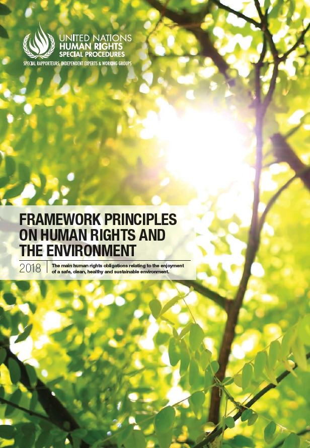 framework principles on human rights and the environment